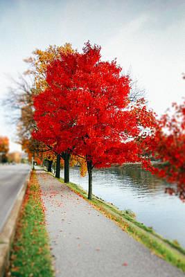 Kanawha Boulevard In Autumn Poster by Shane Holsclaw