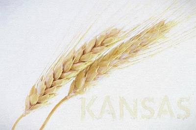 Poster featuring the digital art Kansas by JC Findley