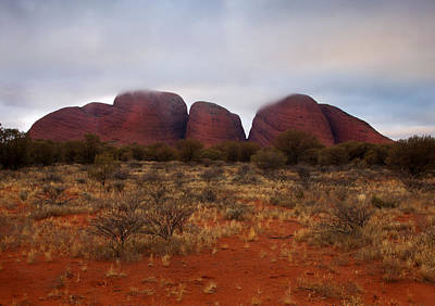 Kata Tjuta Evening Glow Poster by Mike  Dawson