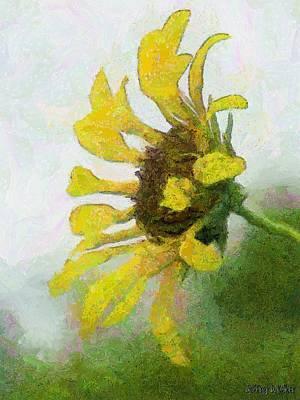 Kate's Sunflower Poster by Jeff Kolker