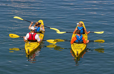 Kayakers In Bar Harbor Maine Poster by Louise Heusinkveld