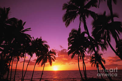 Keawekapu Sunset Poster by Ron Dahlquist - Printscapes