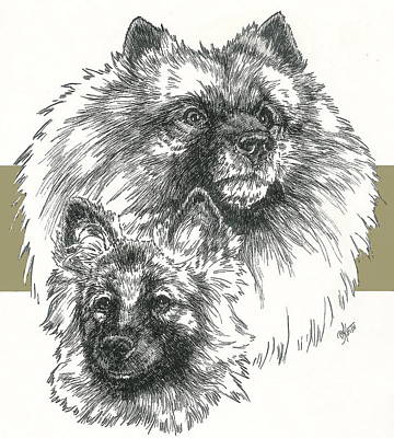 Keeshond And Pup Poster