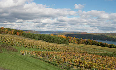 Keuka In Autumn Poster