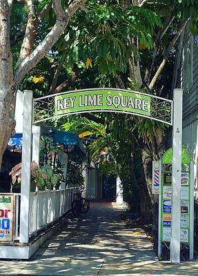 Key Lime Square Poster by Laurie Perry