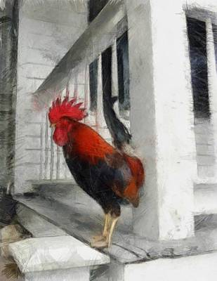 Key West Porch Rooster Poster