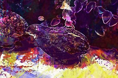 King Quail Species Pheasant Like  Poster