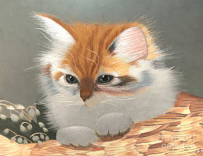 Kitten In A Basket Poster by Sergey Lukashin