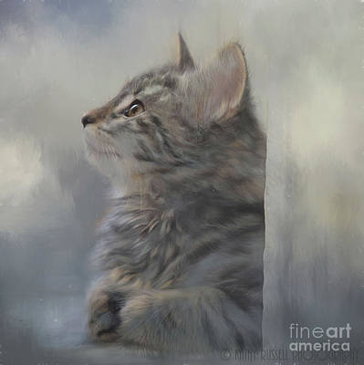 Kitten Zada Poster