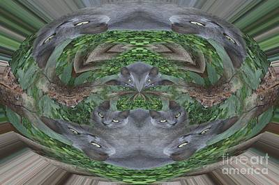 Kitty Abstract  Poster