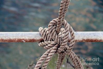 Poster featuring the photograph Knot Of My Warf by Stephen Mitchell