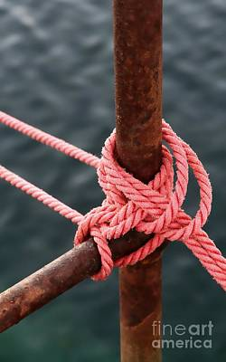 Poster featuring the photograph Knot On My Warf IIi by Stephen Mitchell