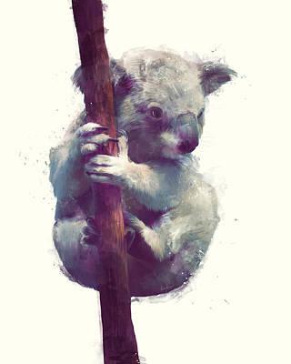 Koala Poster by Amy Hamilton
