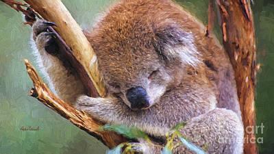 Koala Bear Sleeping Poster by Garland Johnson