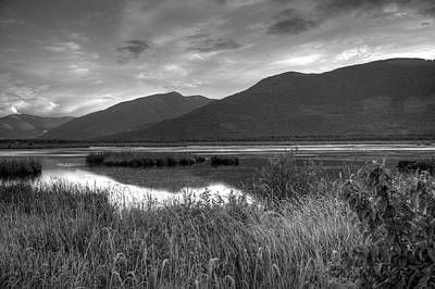 Kootenay Marshes In Black And White Poster