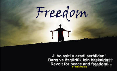 Kurdish Peace And Freedom Poster Poster