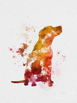 Labrador Poster by Rebecca Jenkins