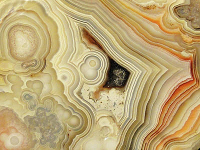 Lace Agate  Poster by Bruce Ritchie