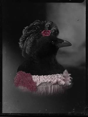 Lady Crow Poster by Gothicrow Images