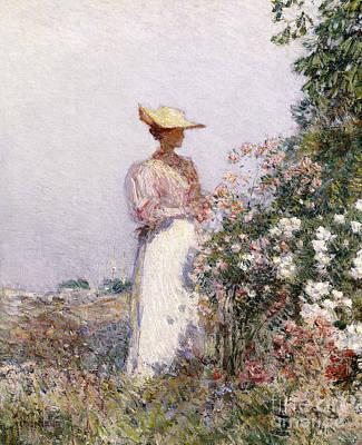 Lady In Flower Garden Poster by Childe Hassam