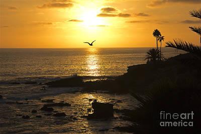 Laguna Sunset Poster