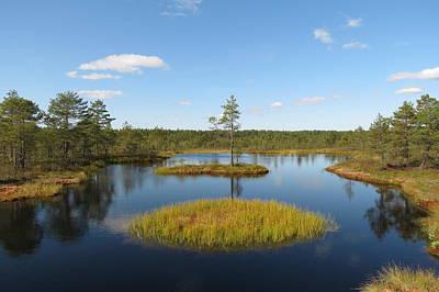 Laheema Nationalpark Estonia  Poster by Eye Contact