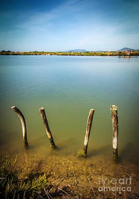 Lake And Poles Poster by Carlos Caetano