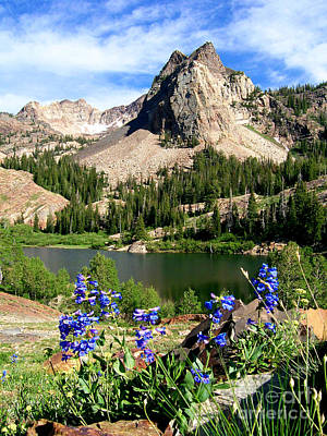 Lake Blanche And Sundial Peak Poster
