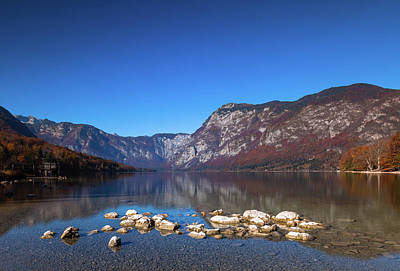 Poster featuring the photograph Lake Bohinj by Davor Zerjav