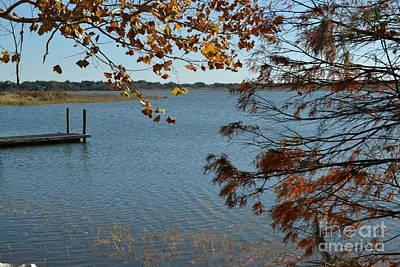 Poster featuring the photograph Lake Bonny Autumn by Carol  Bradley