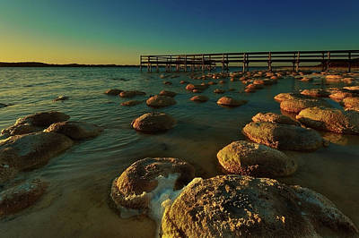 Lake Clifton Thrombolites Poster by Heather Thorning