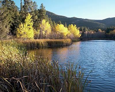 Autumn At Cox Lake Poster
