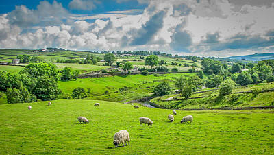 Lake District Sheep Pasture Poster by Gestalt Imagery