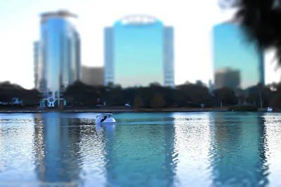 Lake Eola Orlando Poster by Patti Colston