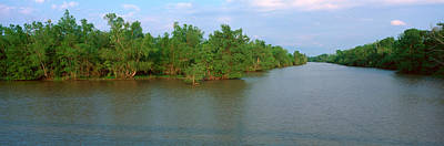 Lake Fausse Pointe State Park, Louisiana Poster