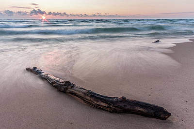 Poster featuring the photograph Lake Michigan Driftwood by Adam Romanowicz