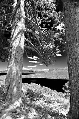 Poster featuring the photograph Lake Tahoe by Sherri Meyer