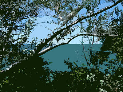Lake Through The Trees Poster by Michelle Calkins