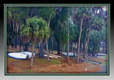 Lake Wauburg Rain Poster