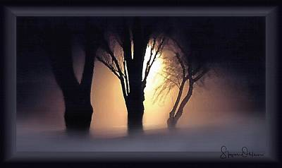 Lamplit Silhouetted Trees In Fog - Signed Limited Edition Poster