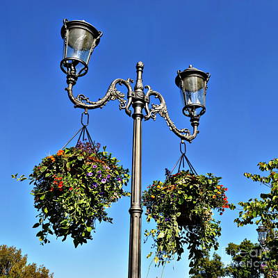 Lampposts And Flowers Poster