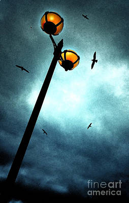 Lamps With Birds Poster by Meirion Matthias