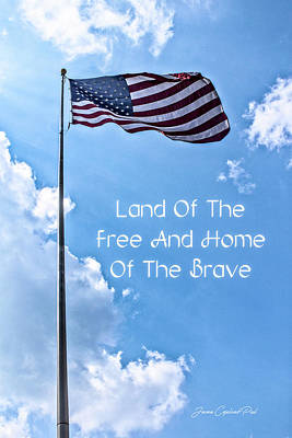 Land Of The Free Poster by Joann Copeland-Paul