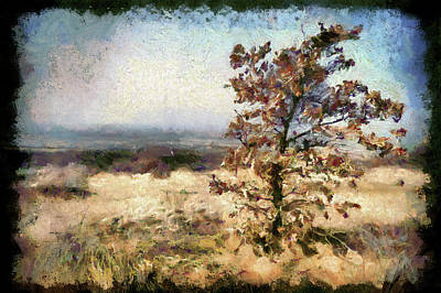 Landscape Of A Lonely Tree, Matra, Hungary. Poster