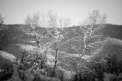 Landscape Taos Nm J10b Poster