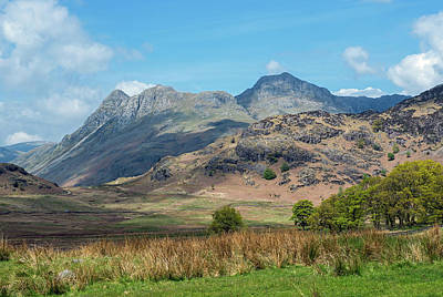 Langdale Pikes From Blea Tarn Poster by Nick Jenkins