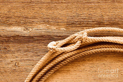 Lariat On Wood - Sepia Poster