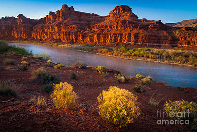 Last Light At San Juan River Poster by Inge Johnsson