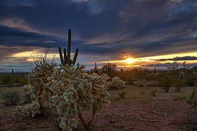 Last Light In The Sonoran Desert  Poster by Saija  Lehtonen
