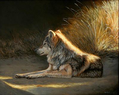 Last Light - Wolf Poster